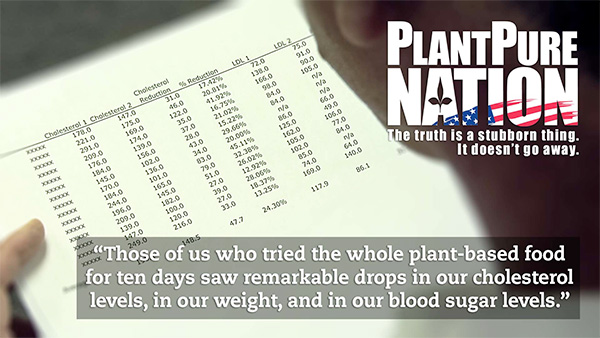 Remarkable drops in cholesterol levels, weight, and blood sugar levels where evident after implementing the PlantPure Philosophy.